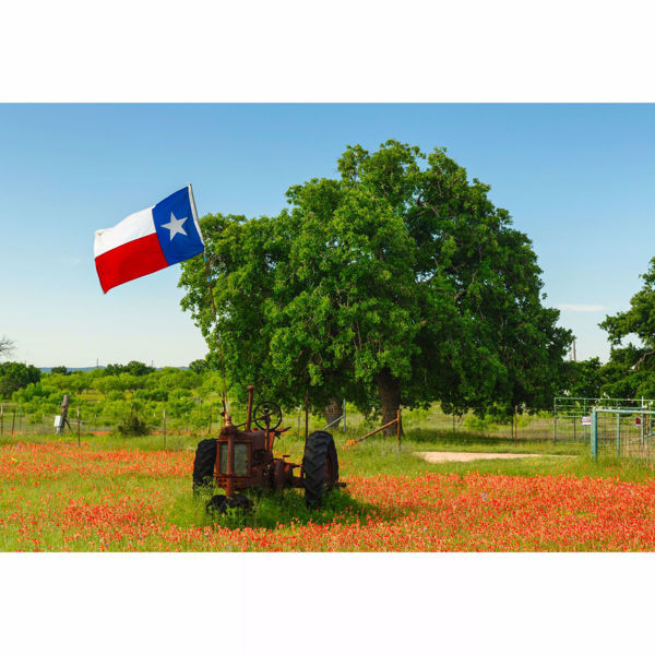 Picture of Old Texas Tractor 32x48 *D