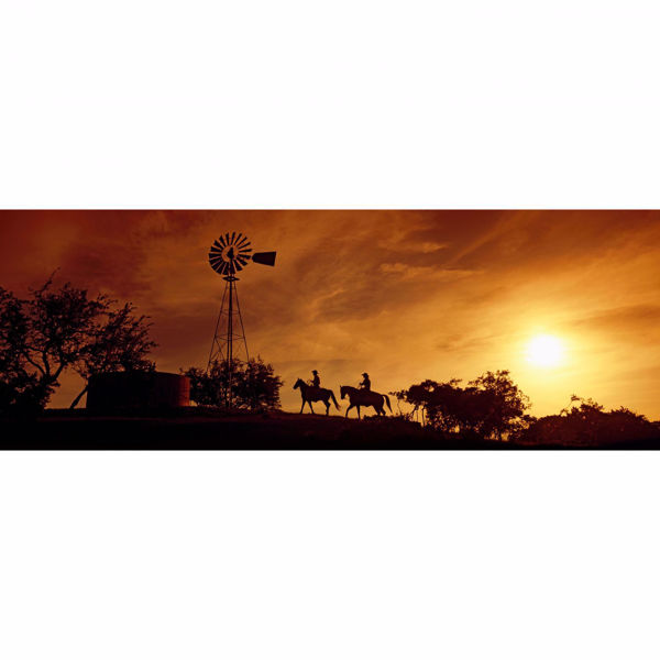Picture of Horse Back Sunset 20x60 *D