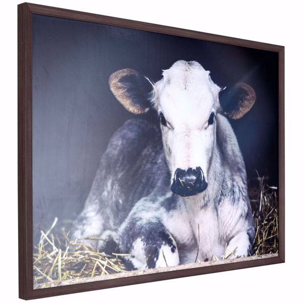Picture of Resting Cow Framed Wall Decor