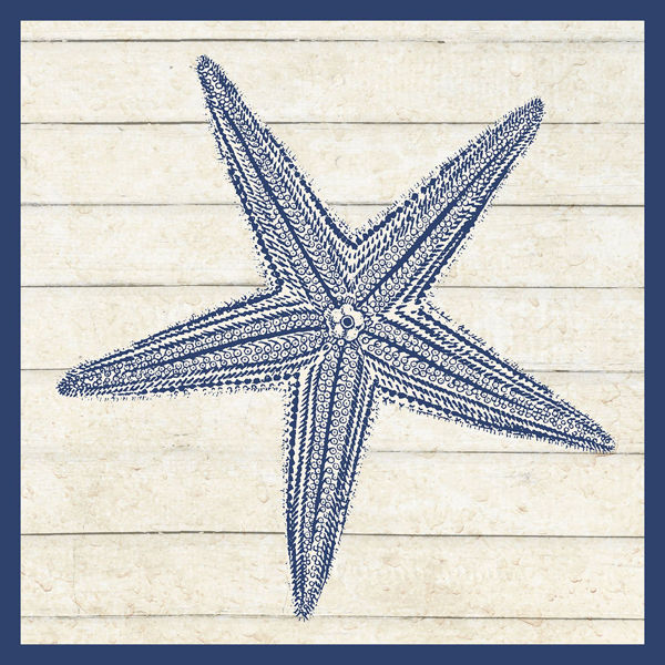 Picture of Starfish Sand Star Wall Decor