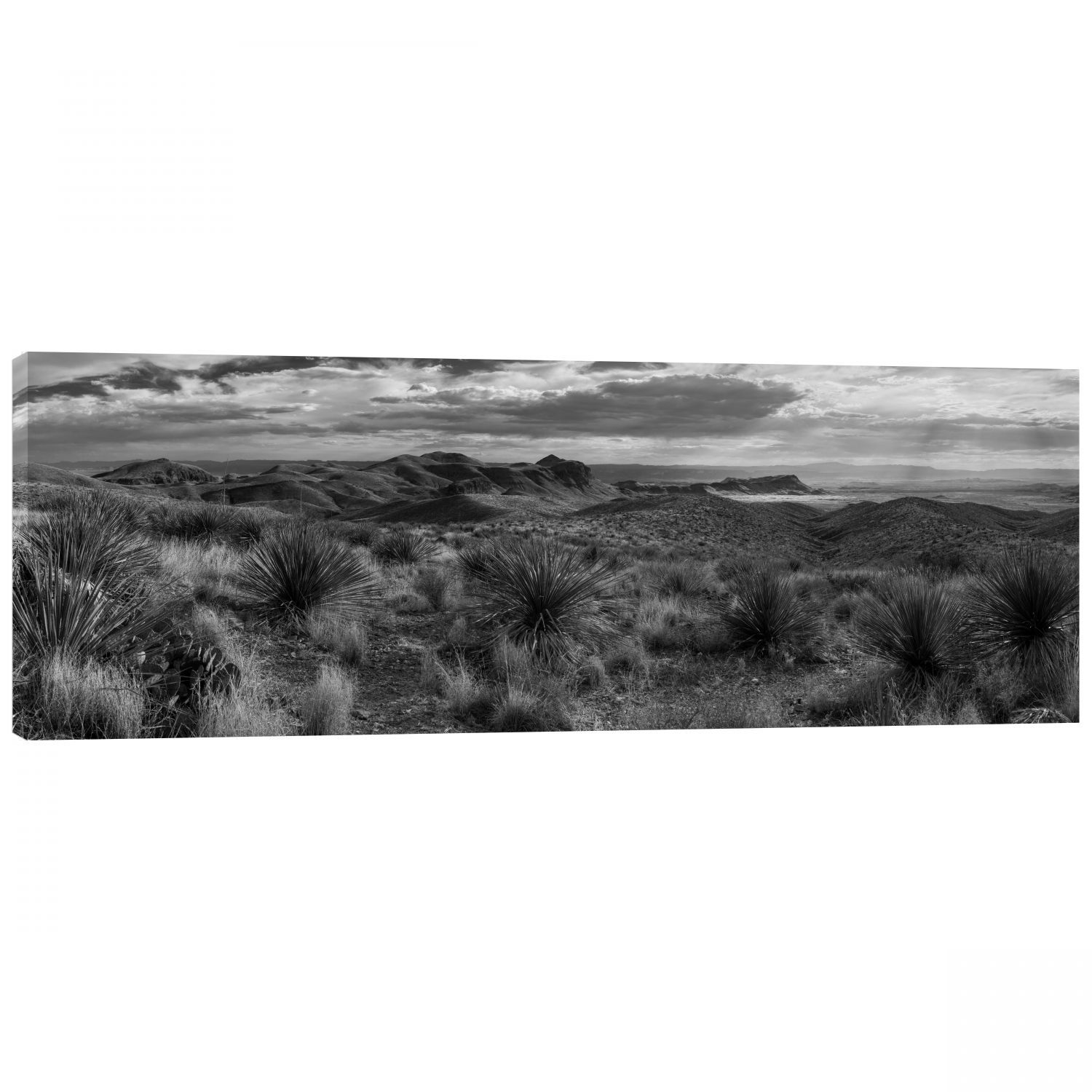 Picture of Sotol Vista BW Pano 20X60 *D