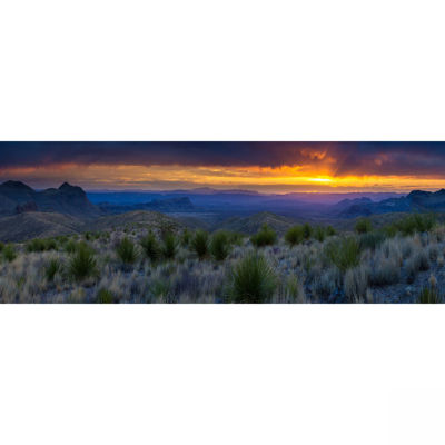 Picture of Sotol Vista Sunset 20X60 *D