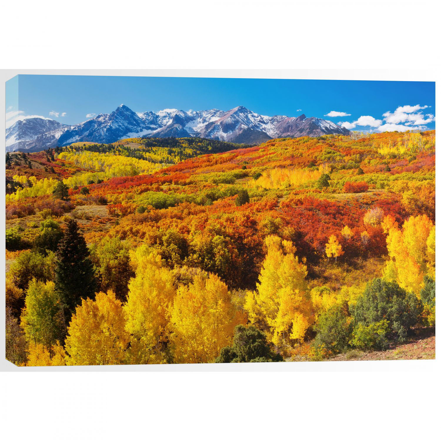 Picture of Dallas Divide Panorama 48X32 *D