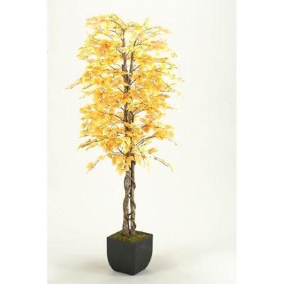 Picture of Fall Aspen Tree 72 In W Metal