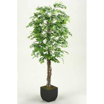 Picture of Green Aspen Tree 72 Inch With Metal