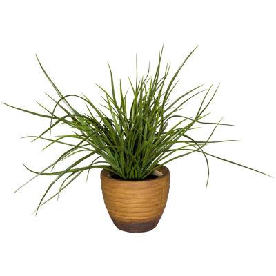 Picture of Grass In Round Terra Cotta